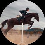 discipline_equitazione